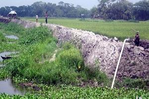 উজিরপুরে হাজার কৃষকের স্বেচ্ছাশ্রমে বেড়ী বাঁধ নির্মাণ