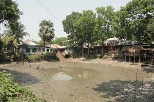 পিরোজপুরে ৩শ' বছরের ঐতিহ্যবাহী পুকুর ভূমিখেকোদের কবলে