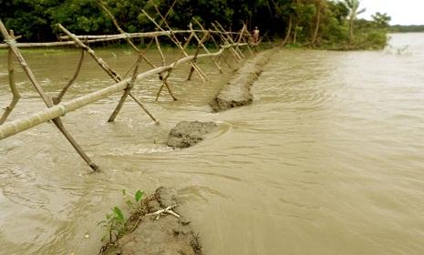 বিষখালী নদীর বাঁধ ভেঙে অসংখ্য গ্রাম প্লাবিত
