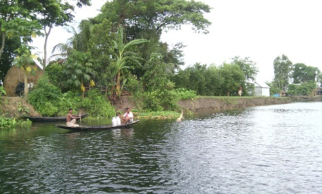জীব বৈচিত্র হারাতে বসেছে গোপালগঞ্জের চান্দার বিল