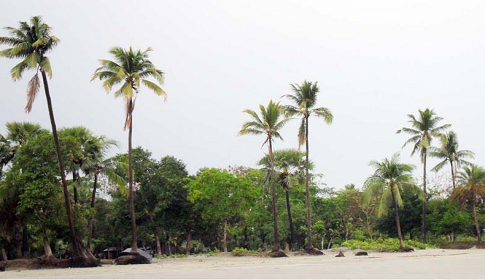 কুয়াকাটায় প্রকৃতি ও সাগরের ঢেউই পর্যটকদের সঙ্গী