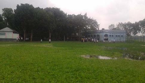 বড়াইগ্রামের উপলশহর উচ্চ বিদ্যালয়ে জলাবদ্ধতায় মাঠ জুড়ে জন্মেছে কচুিরপানা