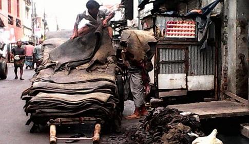 চট্টগ্রাম-রাজশাহীতে হচ্ছে চামড়া শিল্পনগরী