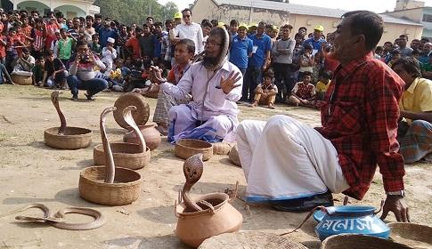 মাগুরায় গ্রাম বাংলার ঐতিহ্যবাহী সাপ খেলা