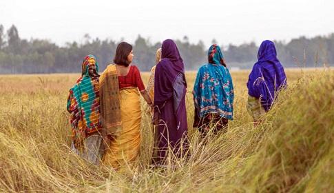 চলচ্চিত্রে বীরাঙ্গনাদের টিকে থাকার করুণ গল্প