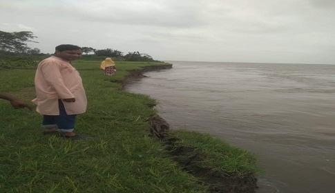যমুনা-ধলেশ্বরী নদীর পানি বিপদ সীমার উপরে, নাগরপুরে ভাঙন শুরু