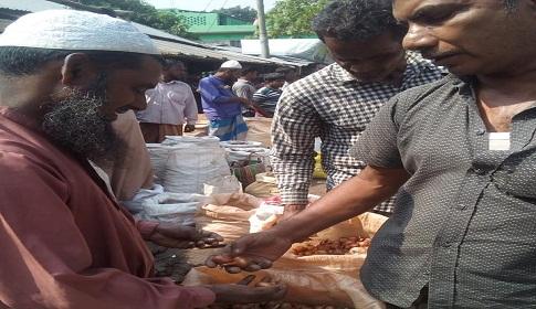 মাগুরায় পেঁয়াজের মূল্য উর্দ্ধমুখি, লাভবান রাখি ব্যবসাসীরা