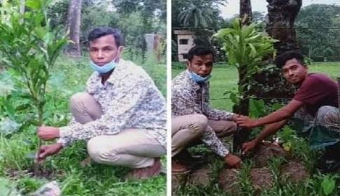 মুজিব বর্ষ উপলক্ষে বৃক্ষরোপন করেছে গলাচিপা উপজেলা ছাত্রলীগ