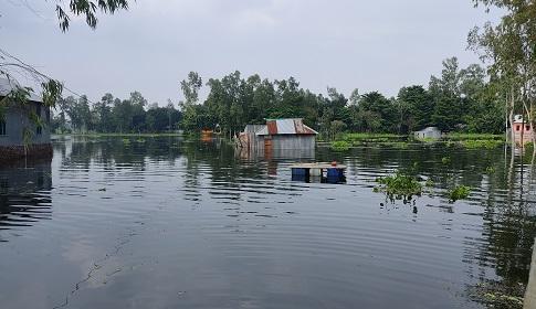 সিরাজগঞ্জে যমুনার পানি কমছে