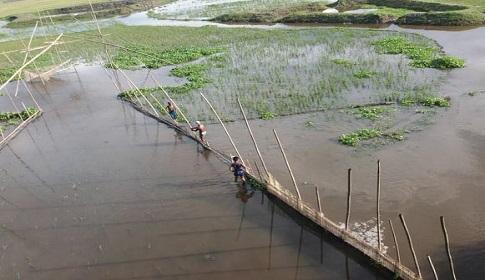 বাঁশের বাঁধ দিয়ে নদী দখলে নিয়ে থামছেনা মাছ ধরা