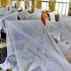 ডেঙ্গু আক্রান্ত চার শতাধিক রোগী হাসপাতালে ভর্তি
