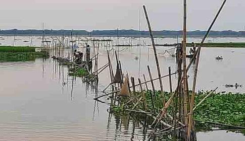 কেন্দুয়ায় নদীতে বাধ উঠিয়ে অবাধে চলছে পোনা মাছ নিধন