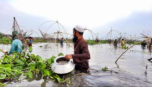 কটিয়াদীতে মাছ ধরার উৎসব