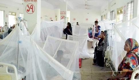 ডেঙ্গু আক্রান্ত হয়ে ১৯৪ জন হাসপাতালে ভর্তি